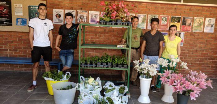 Reparto de flores, plantas y verduras ecológicas de nuestro invernadero